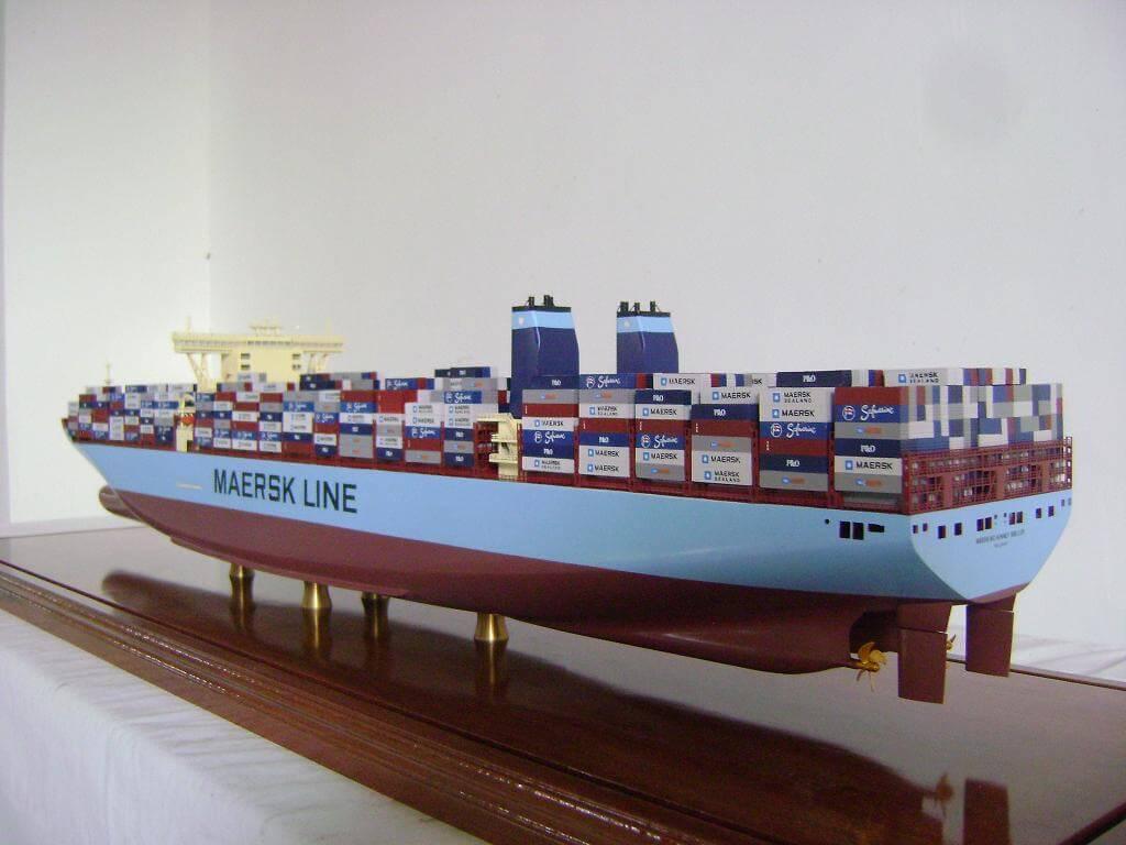 Maersk McKinney Moller Back